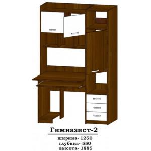 Стіл комп'ютерний Гімназист-2